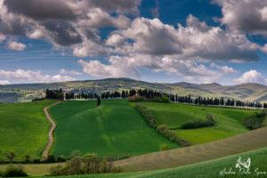 lajatico-toscana-colline