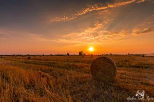toscana-tramonto