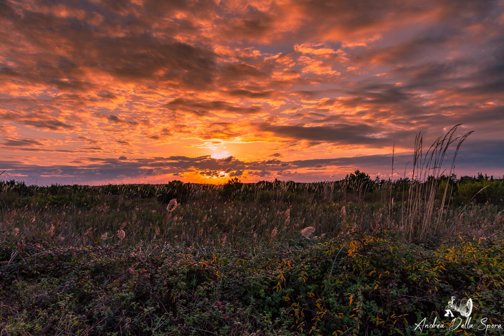 sunset-tramonto-viareggio-italia