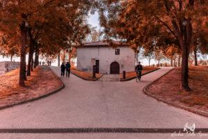 lucca-autunno-mura di lucca