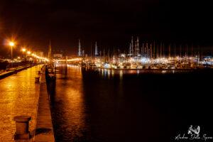 viareggio-porto di notte