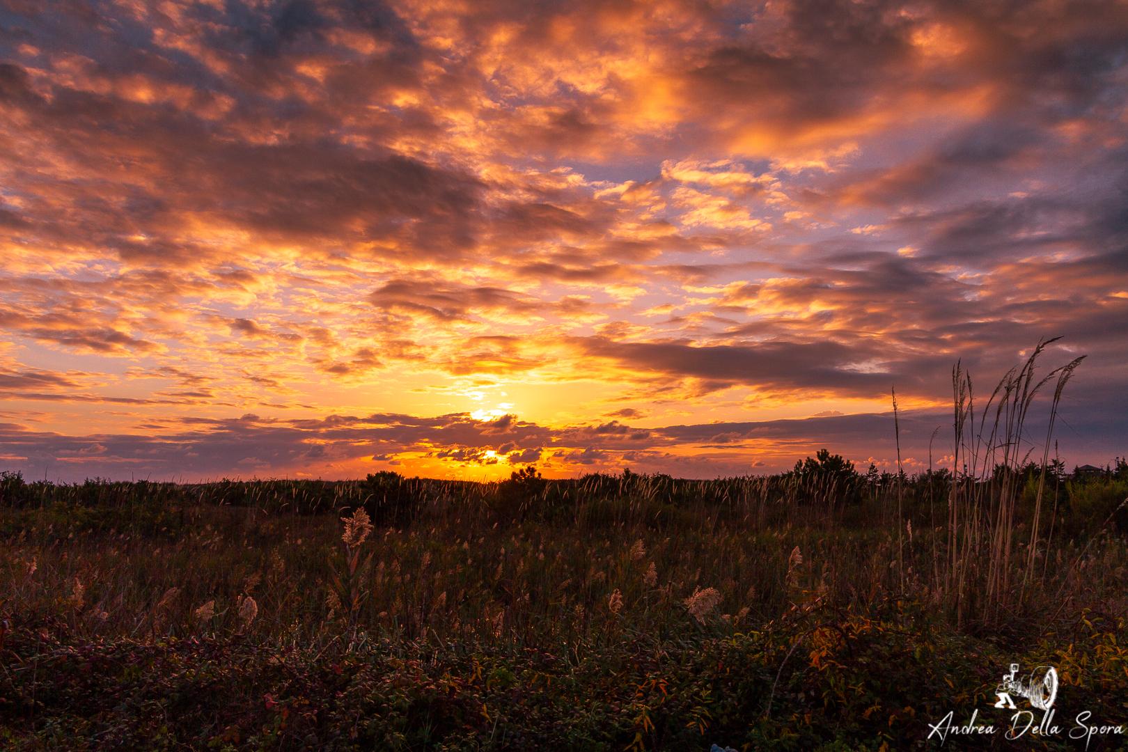viareggio-tramonto-mare